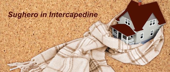 intercapedine